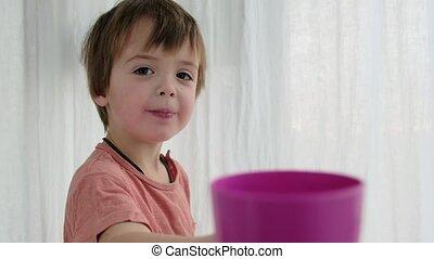 tasse, jeux, pourpre, adorable, garçon, blanc, enfantqui commence à marcher, rideau