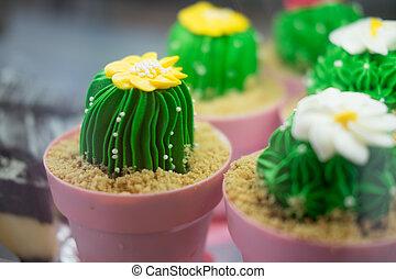 Tasty cake shaped flower cactus