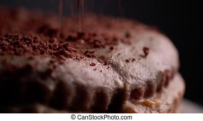 Tasty chocolate cake - Close up of tasty chocolate cake with...