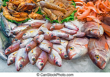 Tasty fish and seafood for sale at a market