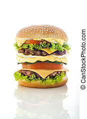 tasty Hamburger over white background