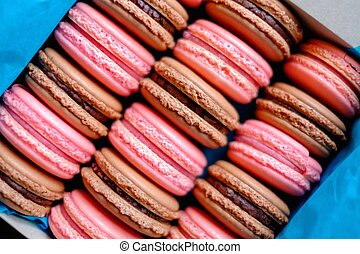 Tasty macaroons in a box