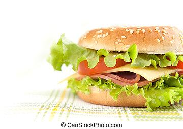 Tasty sandwich closeup