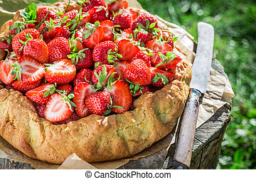 Tasty strawberry pie in sunny day