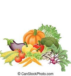 Illustration of an assortment of fresh tasty vegetables