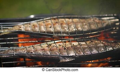 Tasty whole fishes placed on barbecue grill. Trout with ...