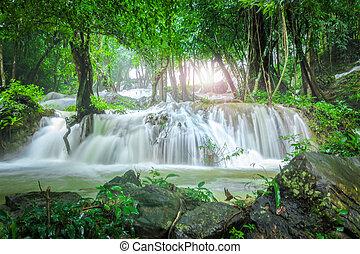 tat, pha, erdő, vízesés, kanchanaburi, thaiföld