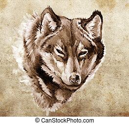 tatouage, croquis, tête, illustration, loup, art