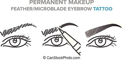 tatouage, microblading, illustration, sourcil, permanent,...
