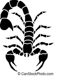 tatouage, scorpion