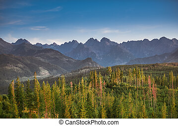 Tatra Mountains panorama in warm sunny summer day