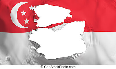 Tattered Singapore city flag