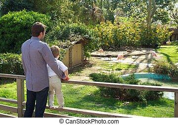 tatuś, z, jego, syn, w, niejaki, zoo.