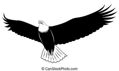 tatuagem, águia