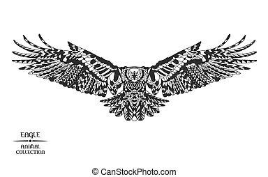 tatuagem, esboço, t-shirt., eagle., stylized, zentangle, ou