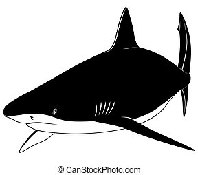 tatuagem, tubarão