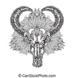 tatuaggio, flower., cranio, lavoro, isolato, illustrazione, mano, vettore, disegnato, mandala, bufalo, puntino