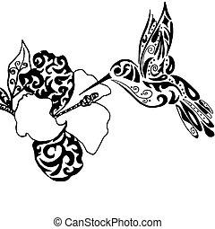 tatuaje, colorido,  hiqh,  qualiti,  isol, orquídea, o, Colibrí