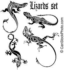 tatuaje, lagarto, conjunto