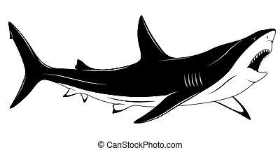 tatuaje, tiburón