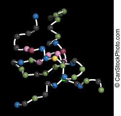 Tau protein fragment. May play a role in Alzheimer's disease. Beads on a string representation (each bead corresponds to an amino acid).