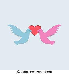 taube, vogel, paar, liebe, vektor, abbildung, grafik