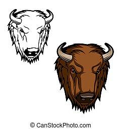 taureau, bison, mascotte, vecteur, tête, ou, buffle