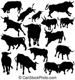 taureau, ensemble, silhouettes