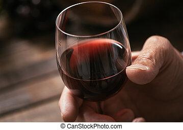 taverna, vino assaggiando