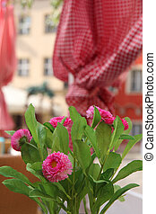 tavola, fiori, strada, ristorante