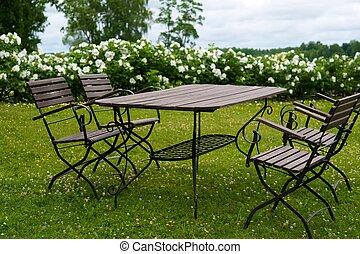 tavola, picnic, prato
