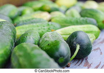 tavola raccolto, verde, cetrioli, fresco