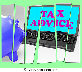 Tax Advice Piggy Bank Shows Professional Advising On...