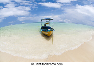 Taxi boat.