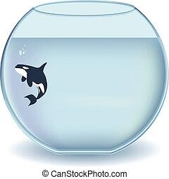 tazón de vidrio, orca