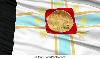 Tbilisi City Close Up Waving Flag