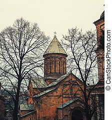 tbilisi, georgia, con, bello, chiesa, in, primavera