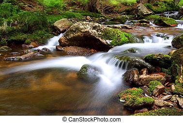 tchèque, parc, national, -, cernohorsky, chute eau, krkonose