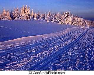 tcheco, beskydy, inverno, república
