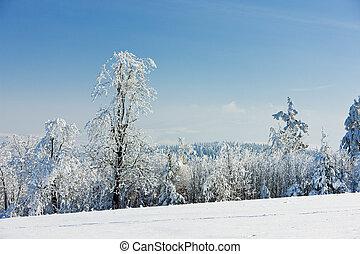 tcheco, montanhas, inverno, república, orlicke