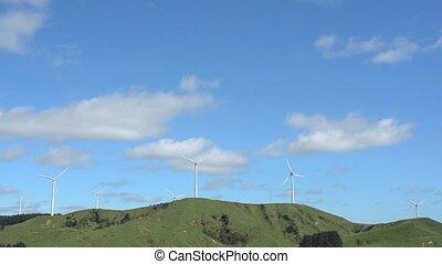 te, apiti, wiatr uprawiają, w, palmerston, północ, nowy...