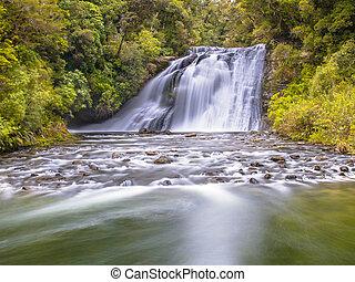 te, wasserfall, üppig, urewera, rainforest