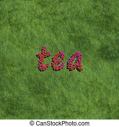 tea create by red color flowers with grass