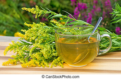 Tea or infusion of Goldenrot or Solidago. - Cup of infusion...