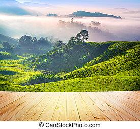 Tea Plantations - Wood floor over tea Plantations at Cameron...