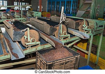 Tea sorting process on sorter on tea factory