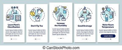 tea., stappen, fooi, instructions., het geven, houseplants, ...