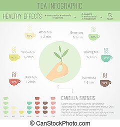 Tea time infographics. The health benefits, cooking, icons...