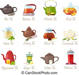 Tea vector puer-tea and rooibos or matcha fruity drinks in ...