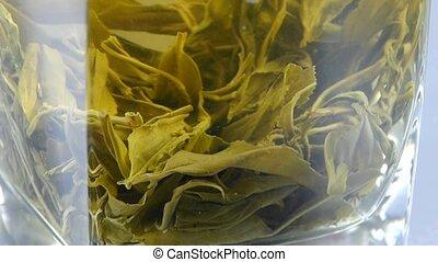 tea., vert, tasse